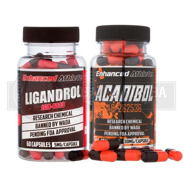 Combo para Bulking LGD4033 Ligandrol + Acadibol (AC-262) - Enhanced Athlete